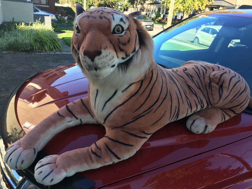 Extra Large Stuffed Tiger