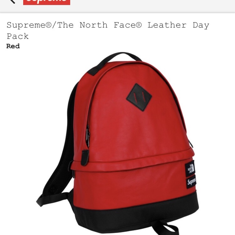 Supreme x northface backpack