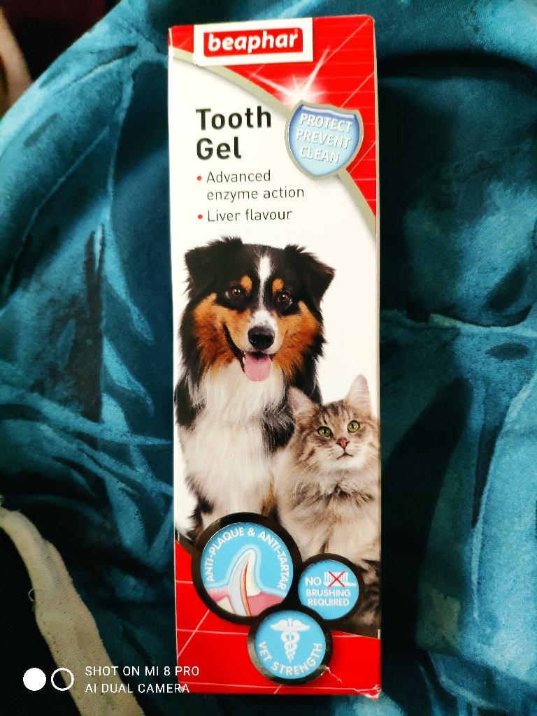 Pet tooth gel