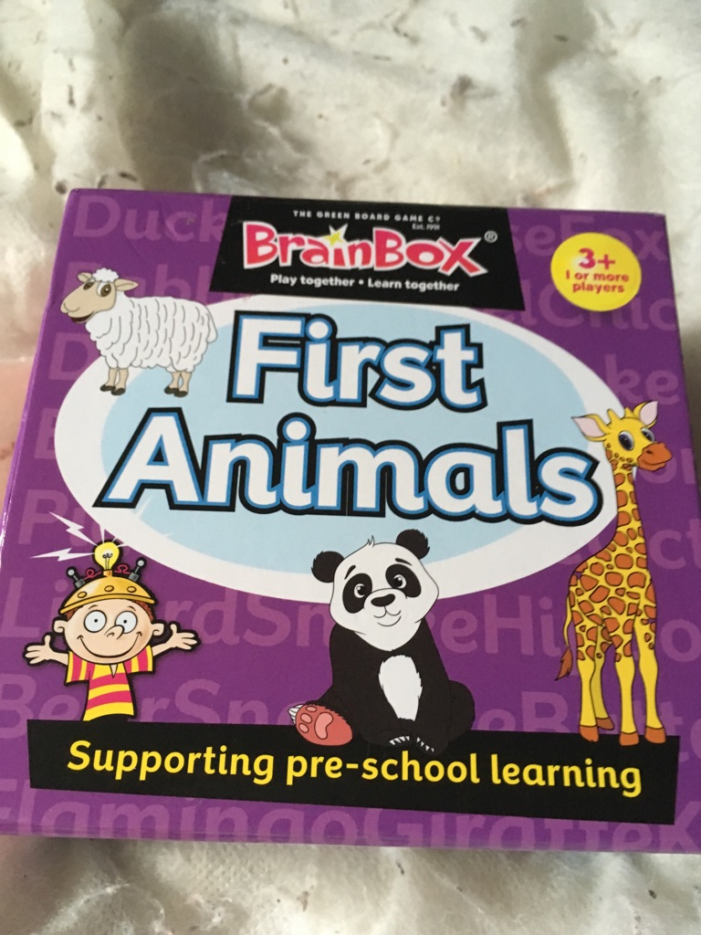 First animals puzzle