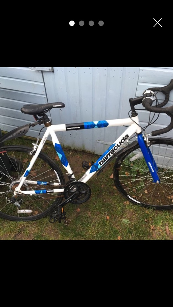 Mens barracuda Road bike