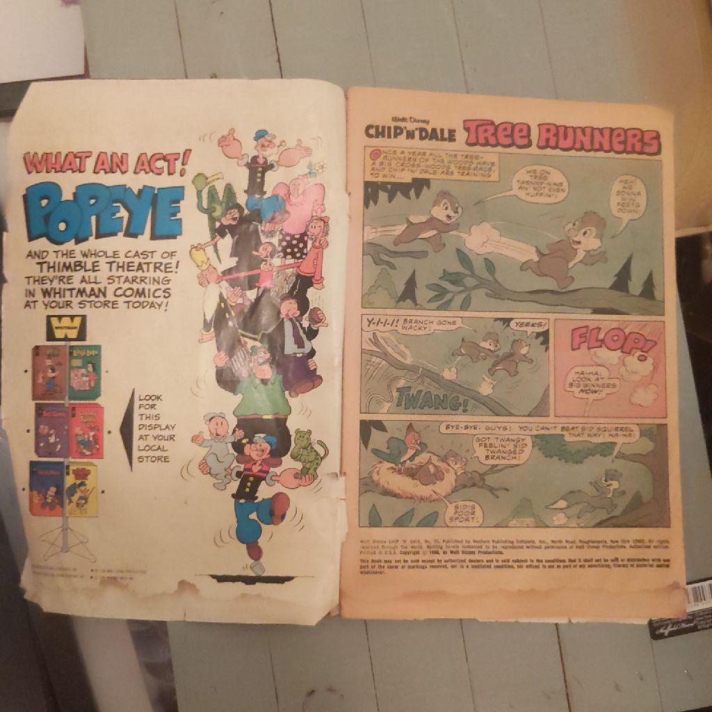 Chip N Dale Comic Book