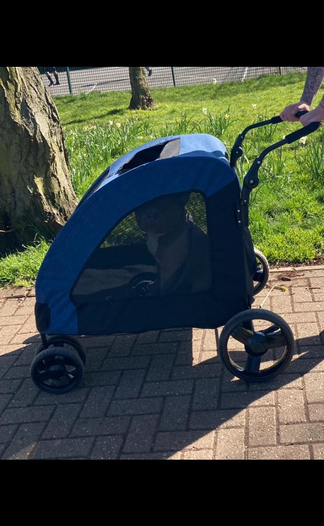 Dog stroller large