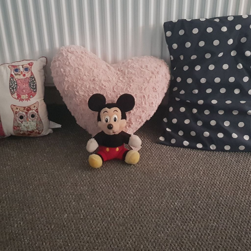 cushions amd teddy