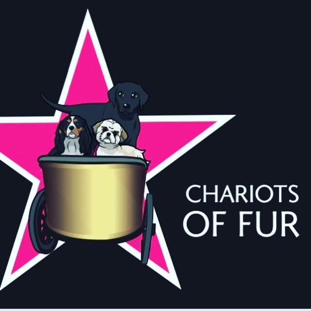 Chariots of fur
