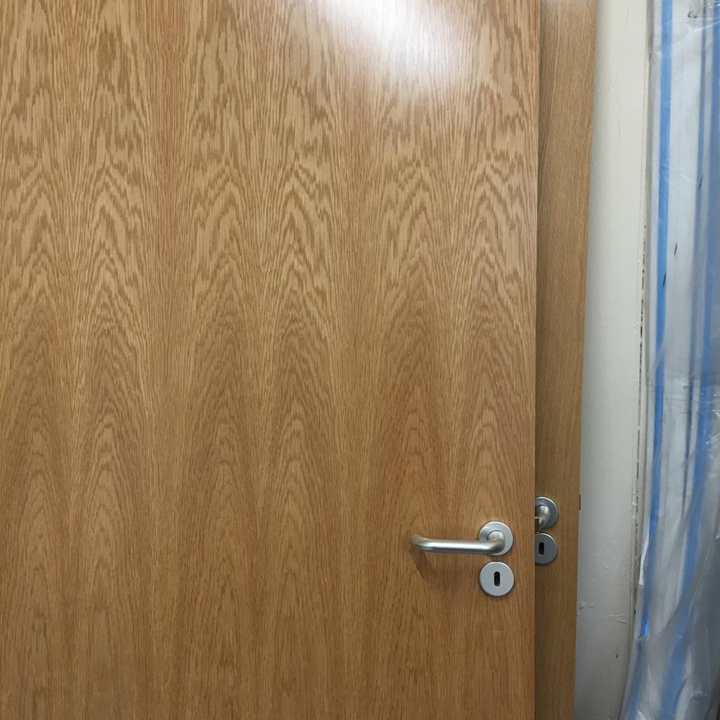 30 min Fire Door