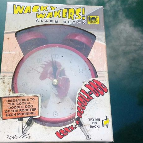 Wacky wakers alarm clock