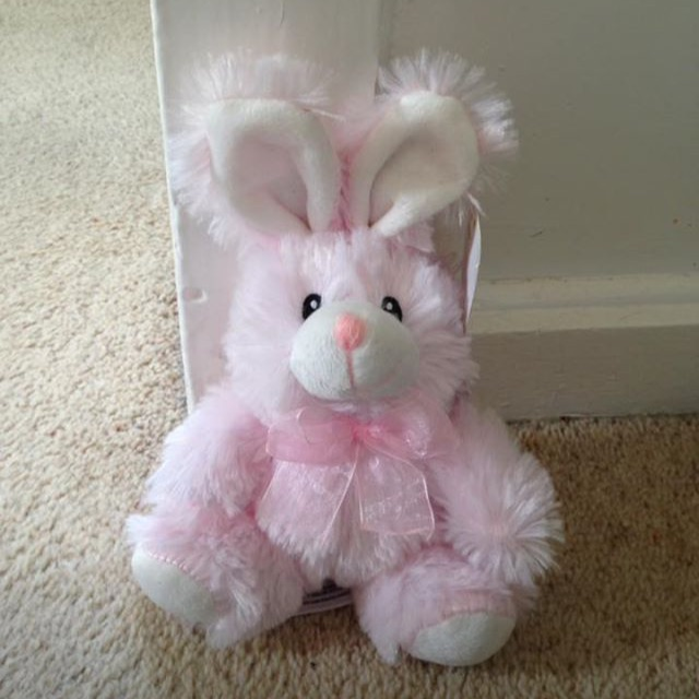 Small Pink Bunny Teddy