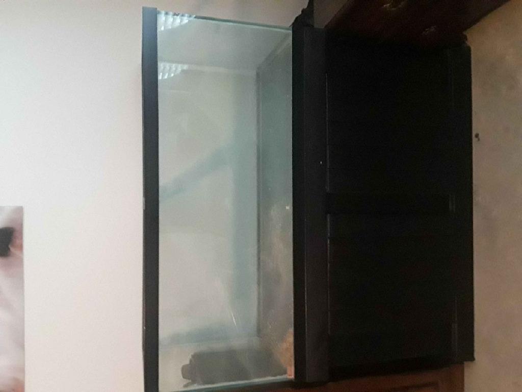 75 Gallon Aquarium/Terrarium