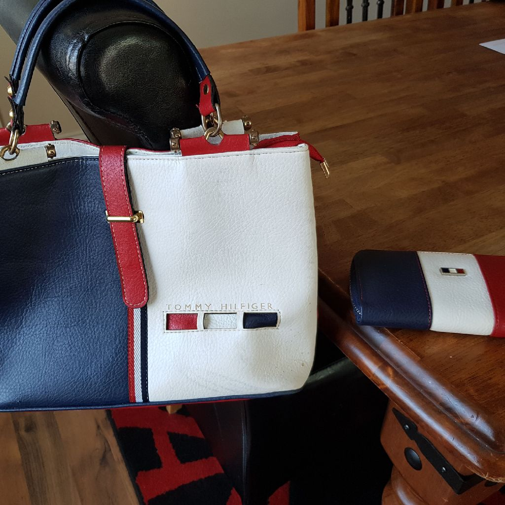 Designer Style Bag and purse