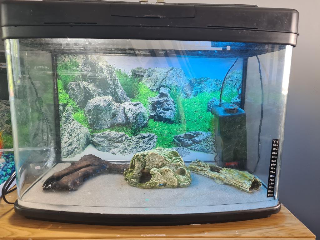 64l fish tank