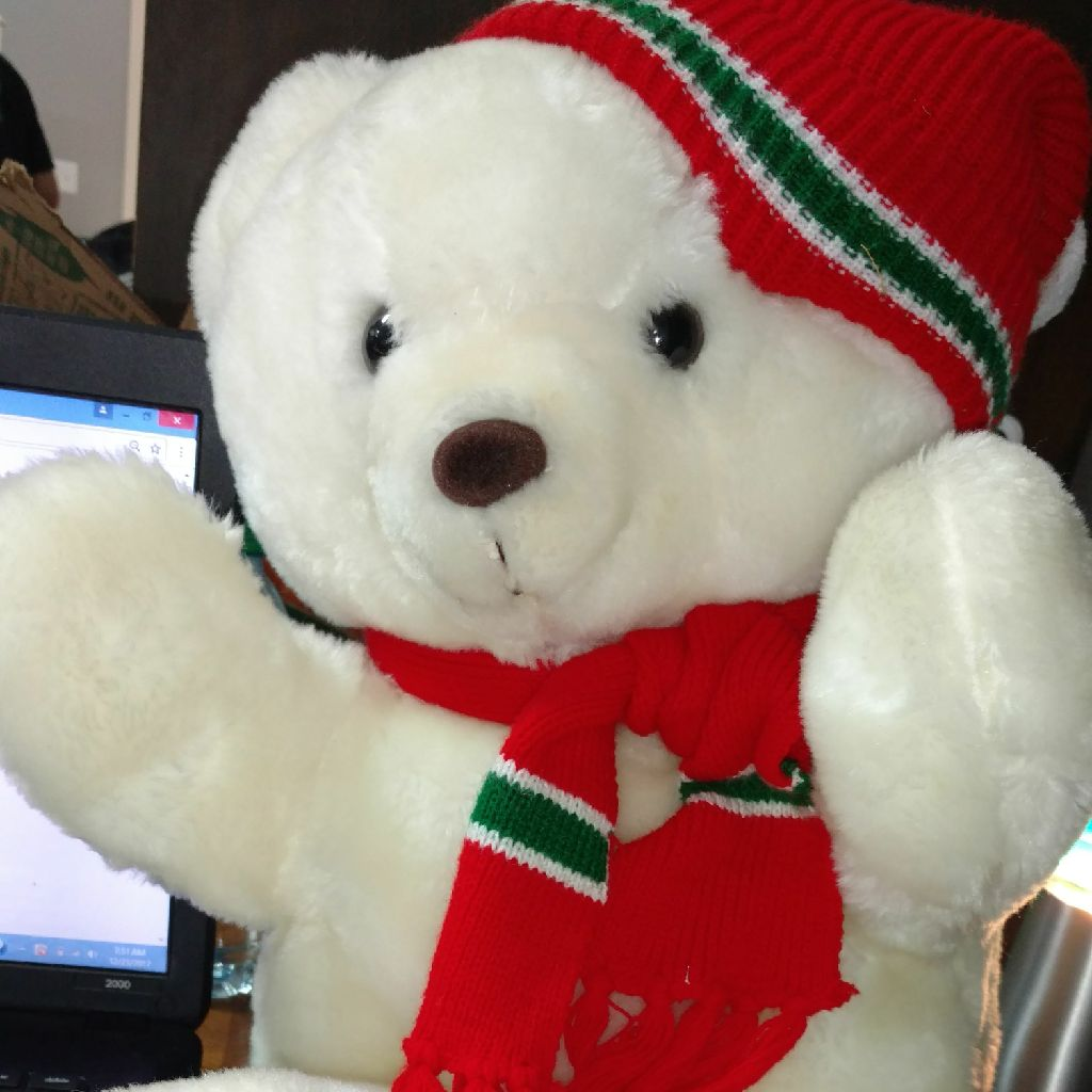 White and red plush bear