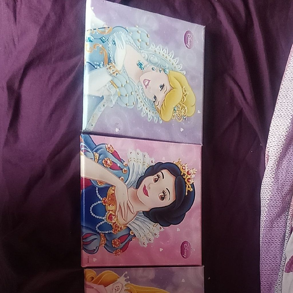 Disney princess wall pictures