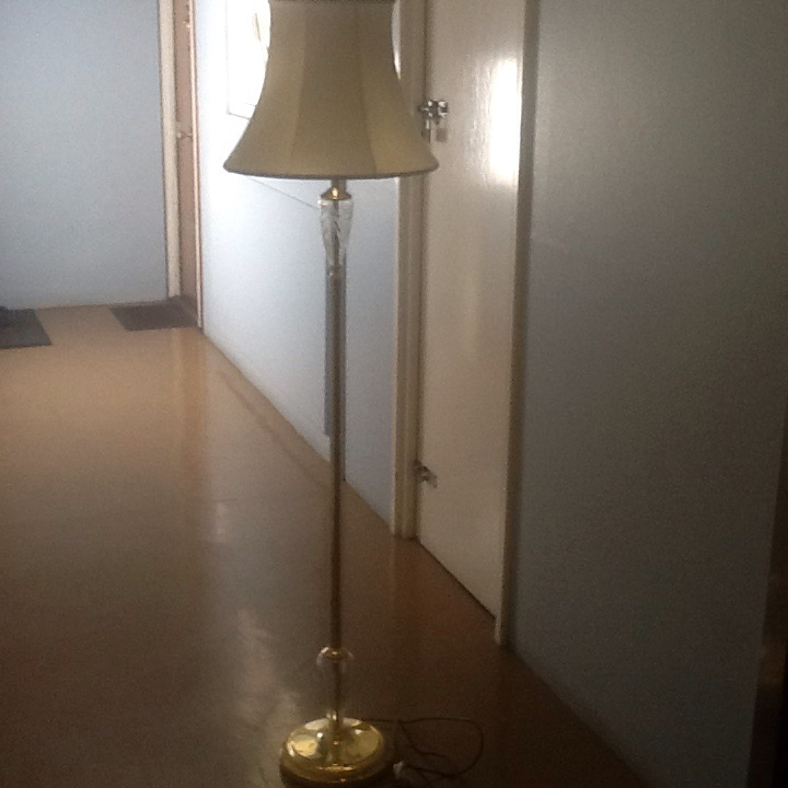 Brass and Crystal Glass Globe Floor Lamp with Lamp Shade