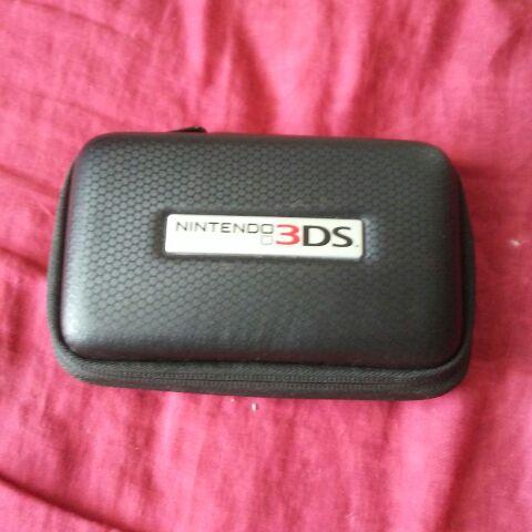 Nintendo Case
