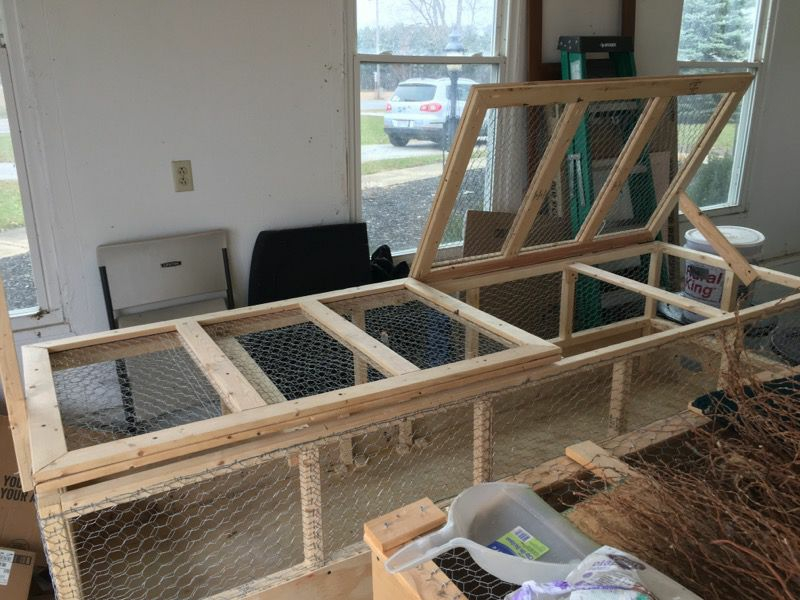 Custom Chick Brooder!