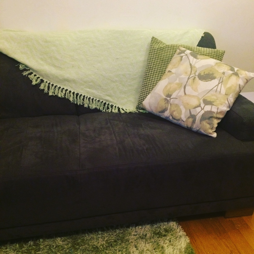 Set of 3, 2 cushions with throw rug