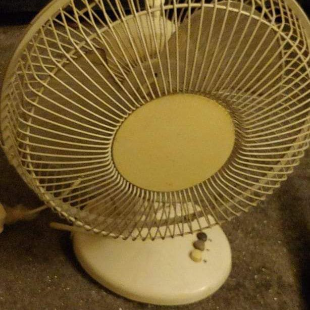 Indoor fan