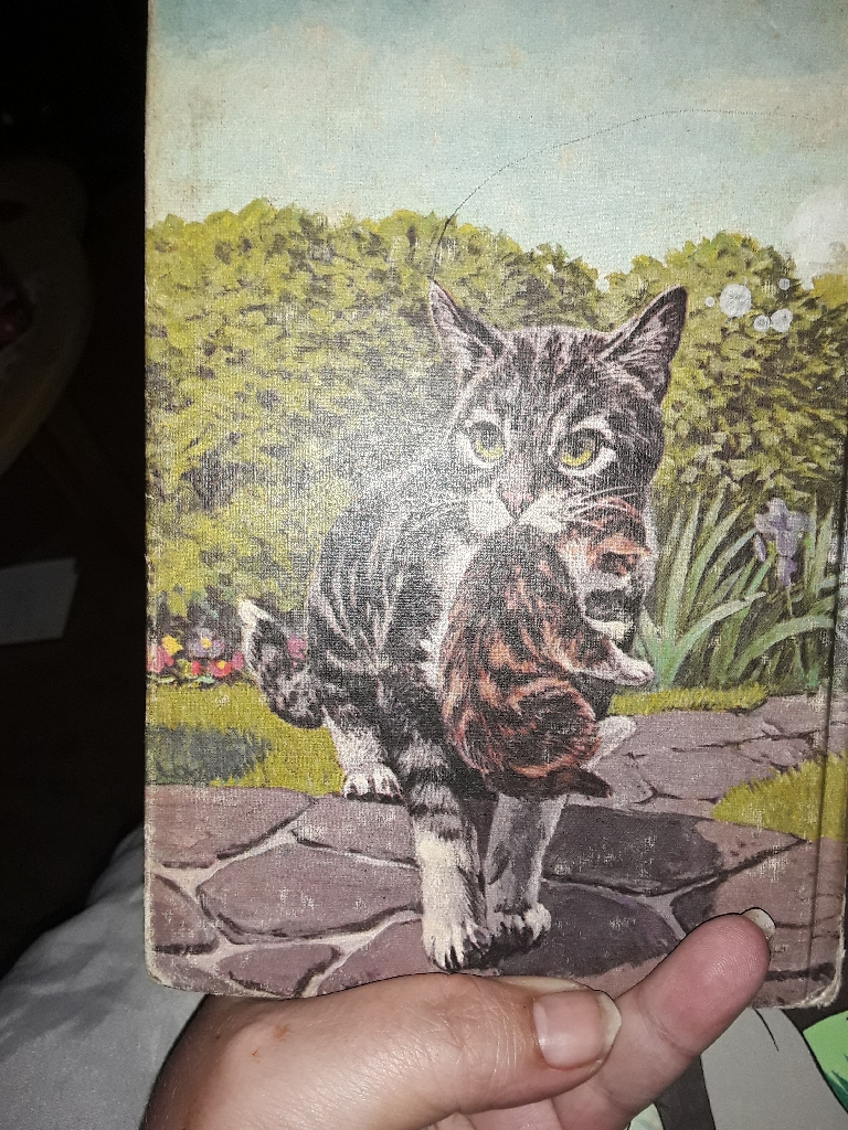 Vintage Children's book  Cleo