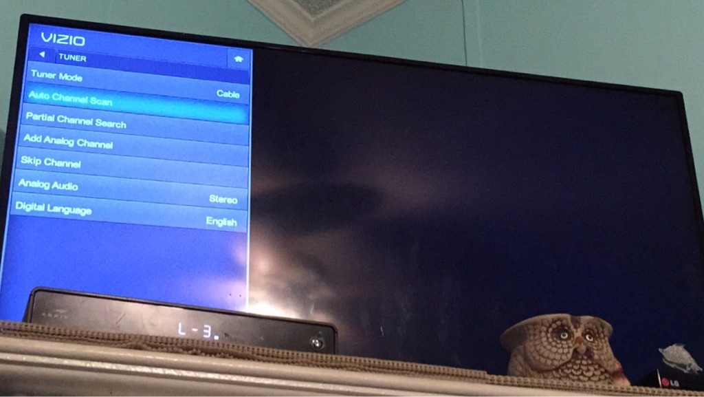 VIZIO Flat Screen TV