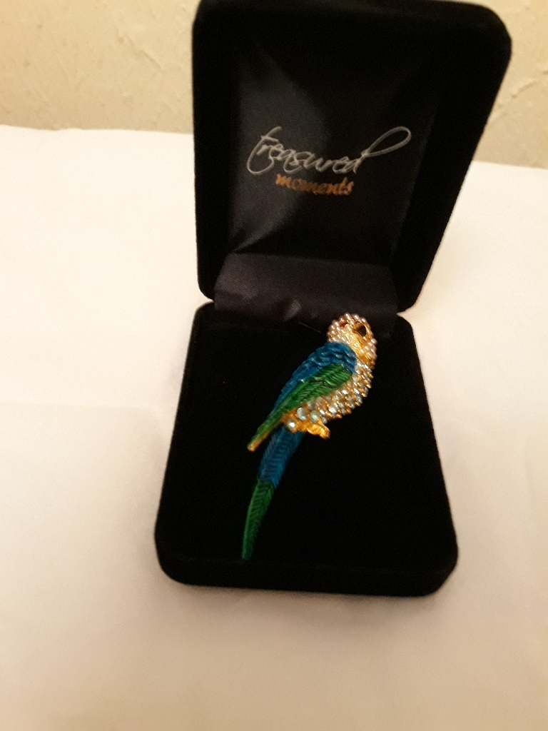 Beautiful parrot brooch