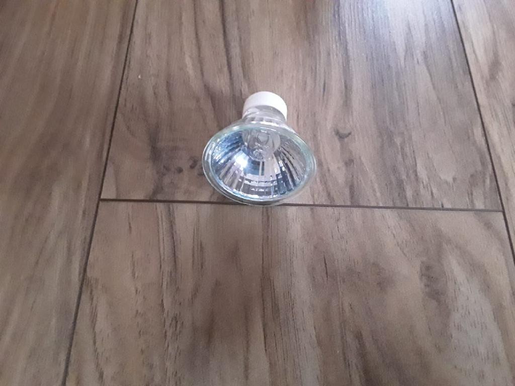 Box of 10 GU10 50watt halogen bulbs
