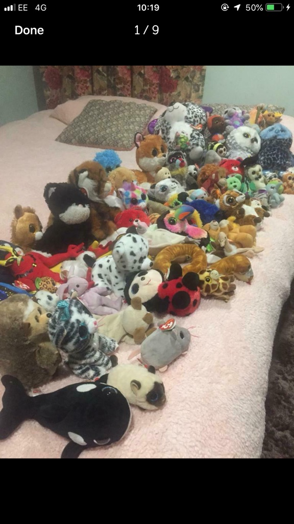 tY beanie babies and boos 71 piece bundle