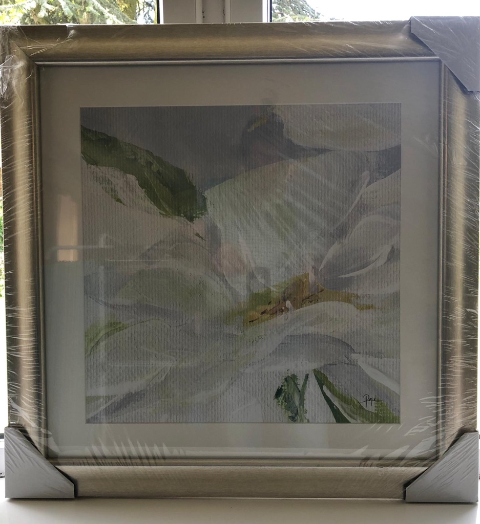 BRAND NEW JOHN LEWIS SINGLE DAISY FRAMED PRINT