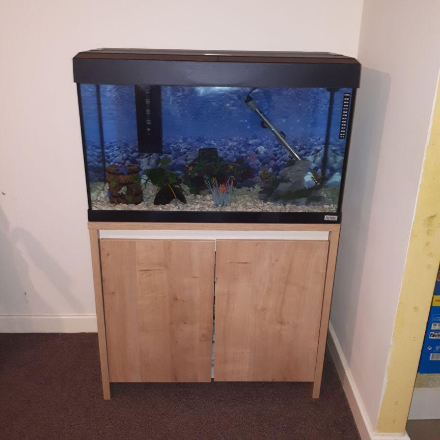 Aquarium fish tank and cupboard