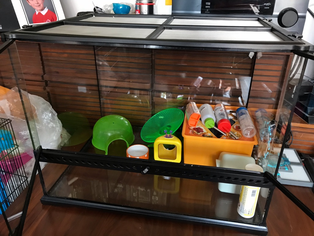 Mouse/hamster/reptile glass tank