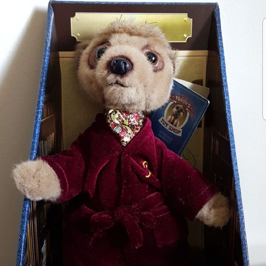 Meerkat, boxed