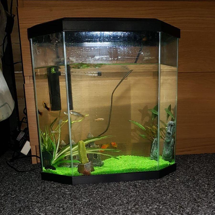 25l Acquarium fish tank