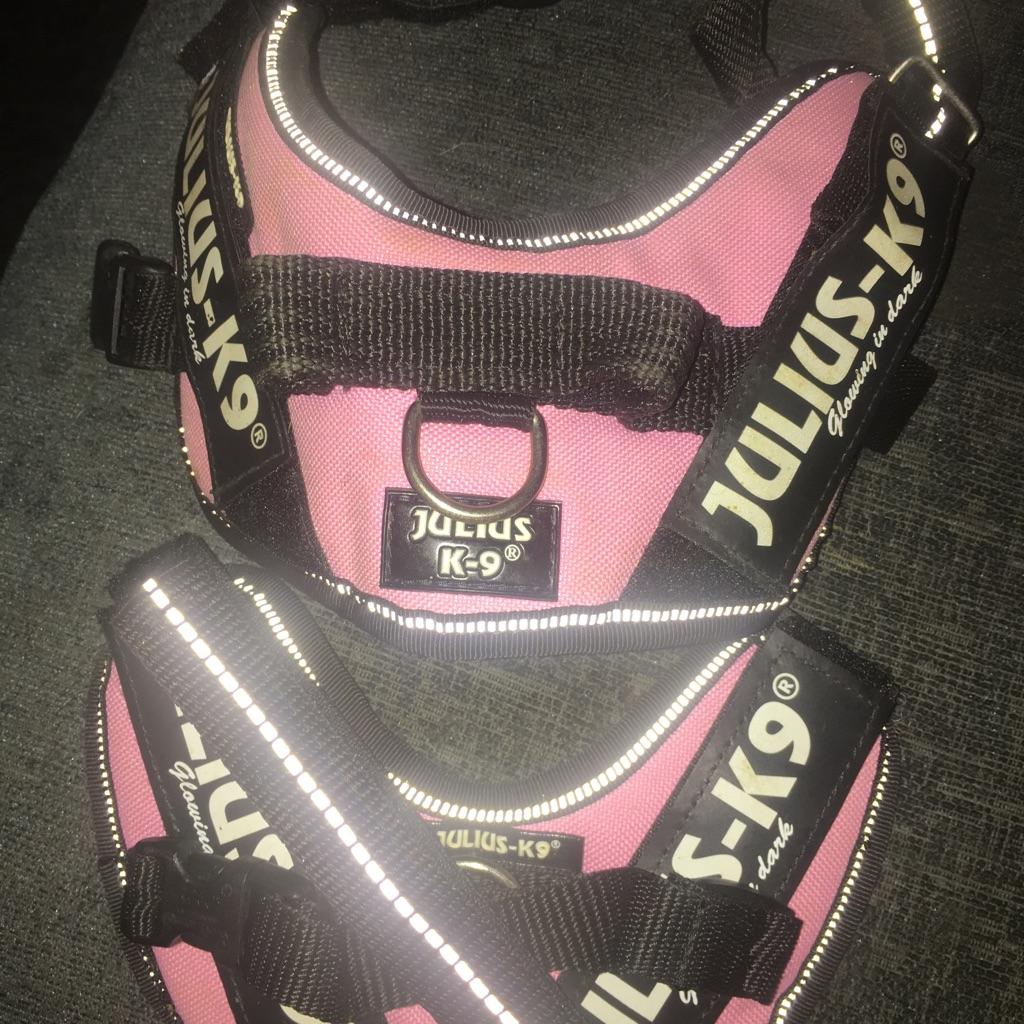 Julius k9 harnesses