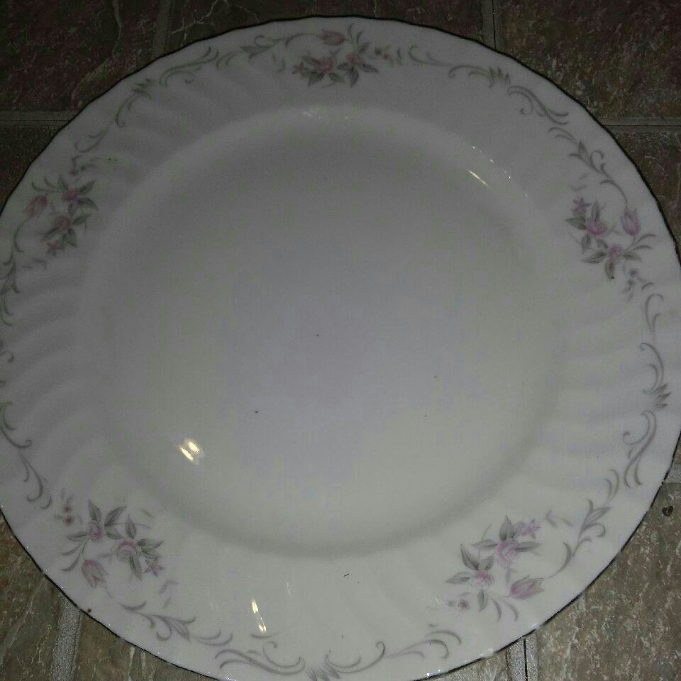 Genuine Porcelain Plate