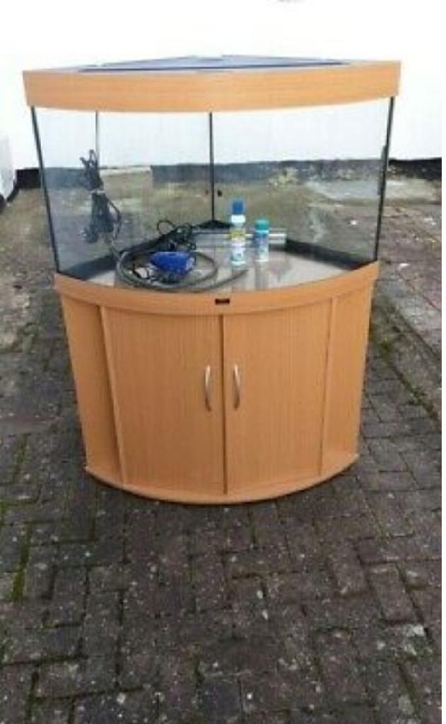 Juwel trigon 190 L fish tank