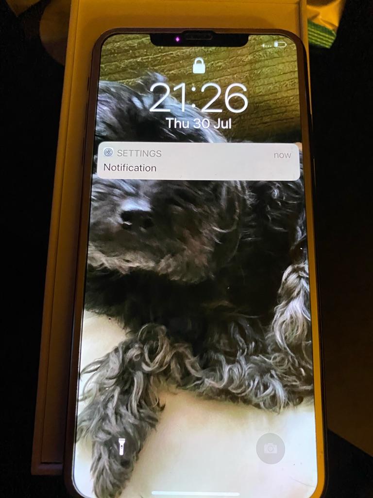 IPhone XS Max 523 GB gold