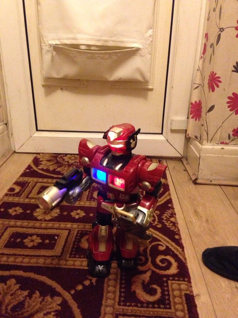 Walking talking robot