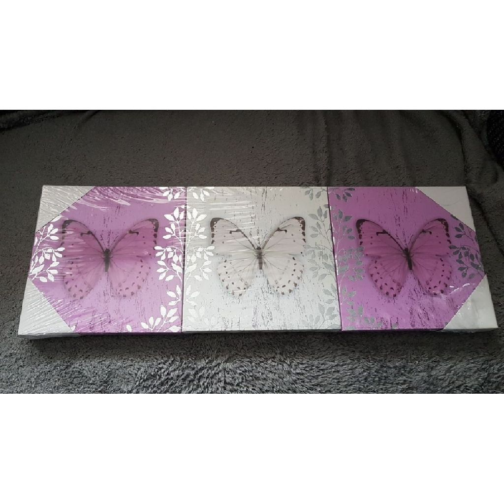 3 small butterfly canvases