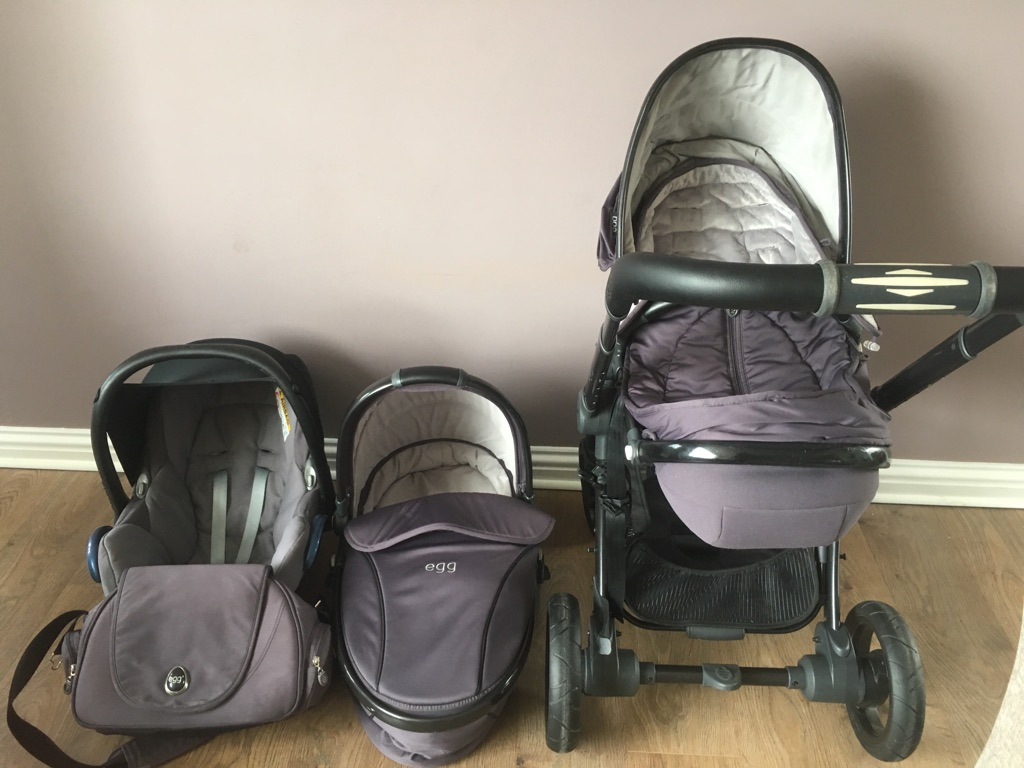 Egg travel system