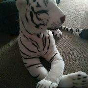 Big white plush tiger