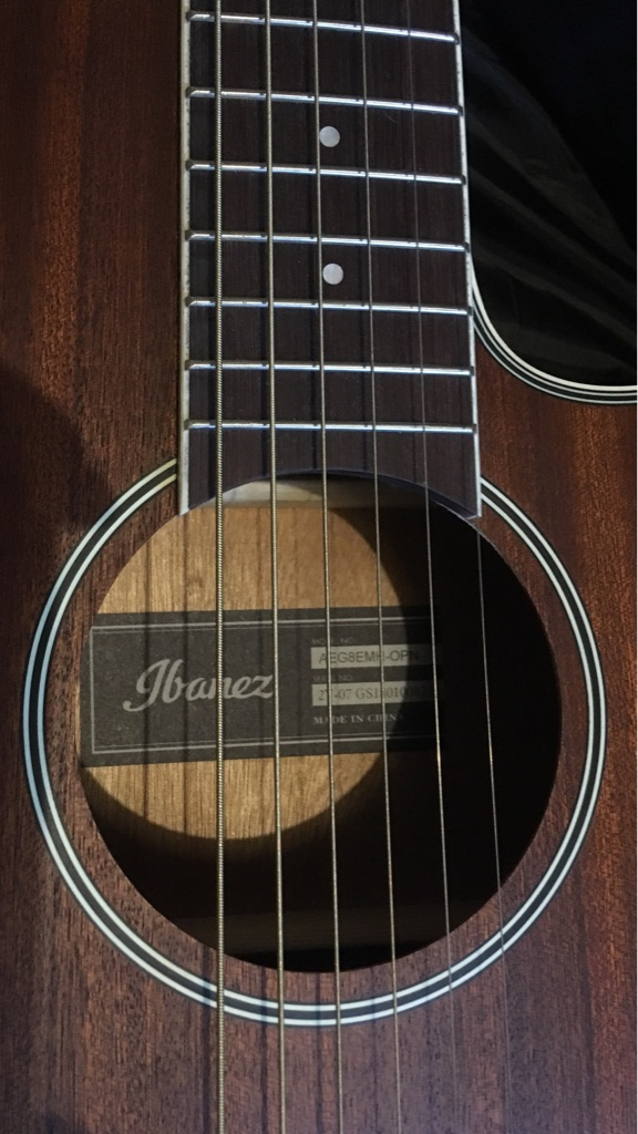 Ibanez Guitar *As New, FREE carry case!*