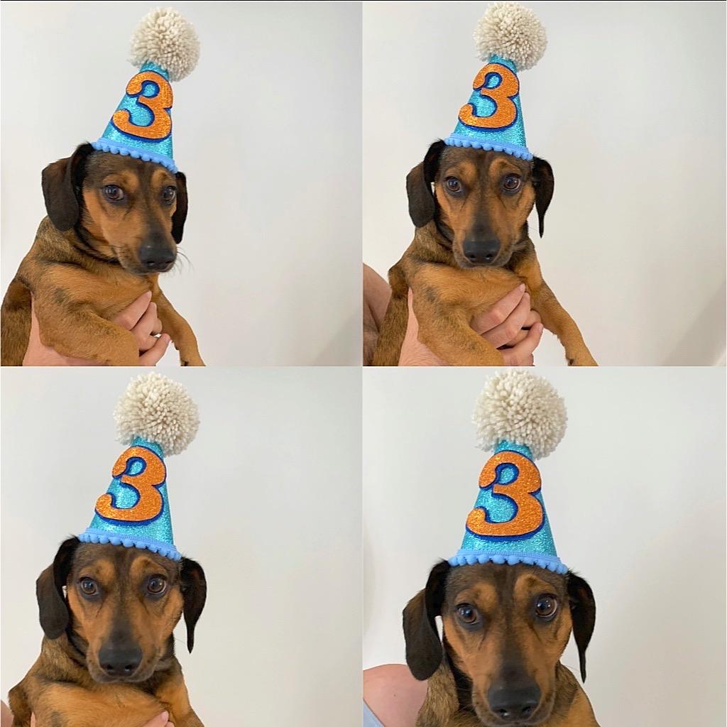 Personalised birthday hats