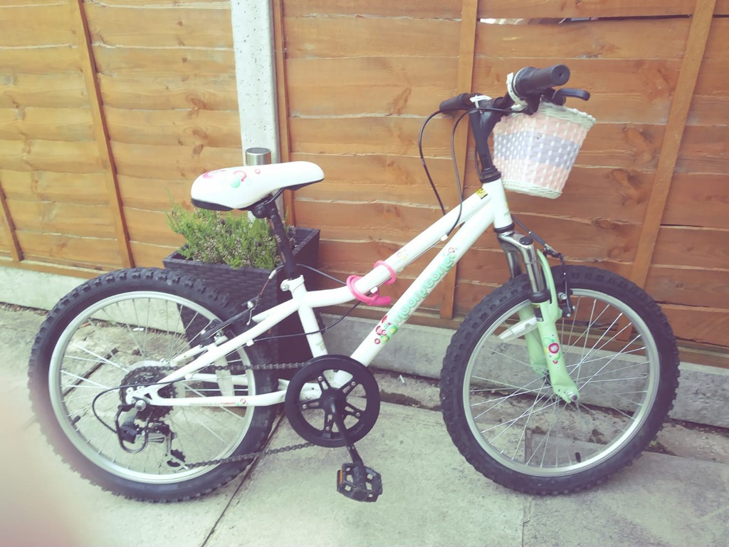 Girls 20'' bike