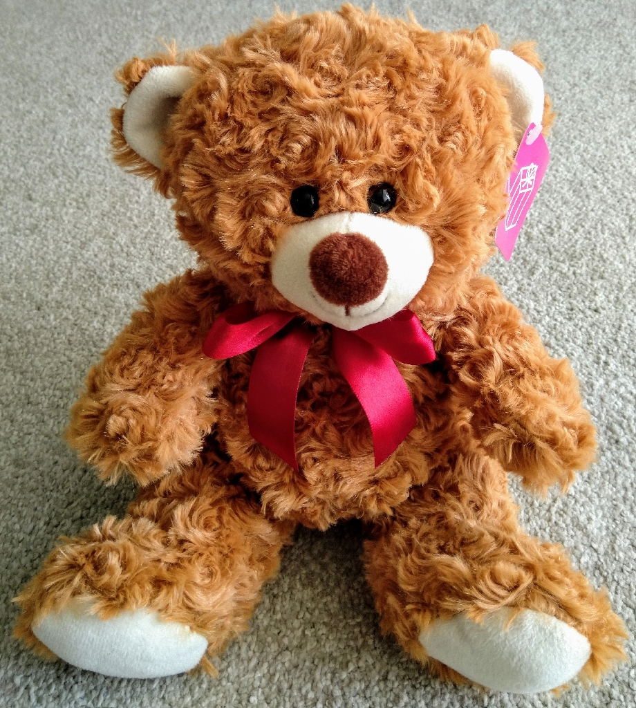 "Brand New 10"" Brown Teddy Bear Soft Toy"