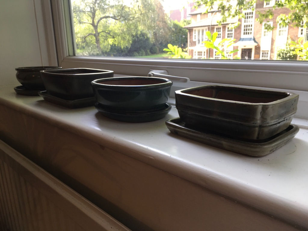 Bonsai glazed ceramic pots with their matching trays