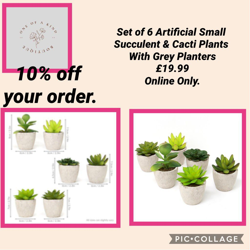 💥Set of 6 Artificial Small Succulent & Cacti Plants With Grey Planters