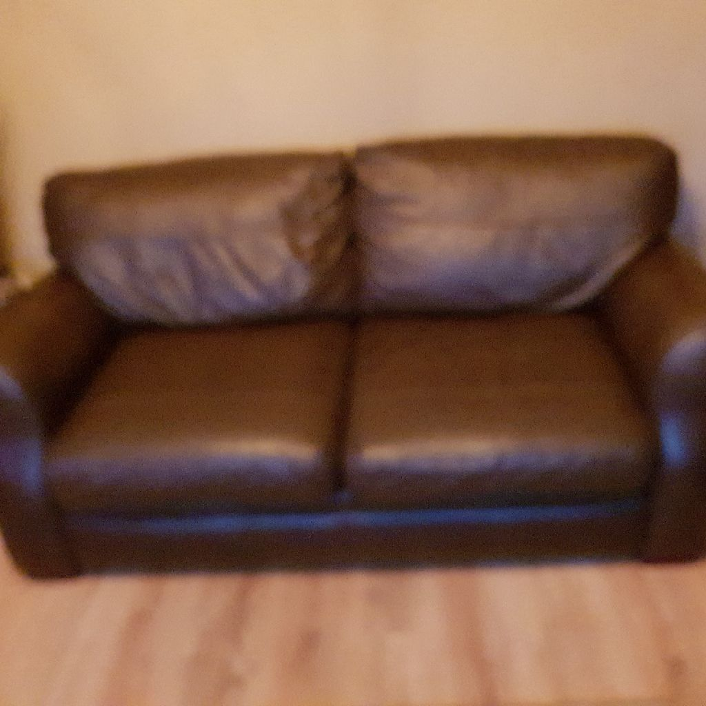 Reid's Chicago Chocolate Brown leather sofas