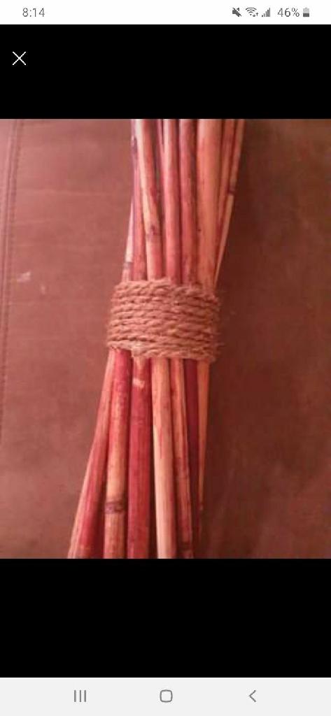 Bundle of bamboo sticks