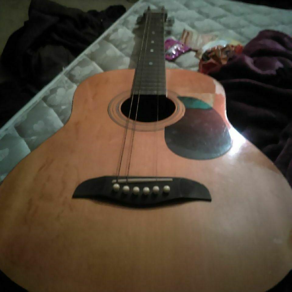 Oscar Schmidt Guitar