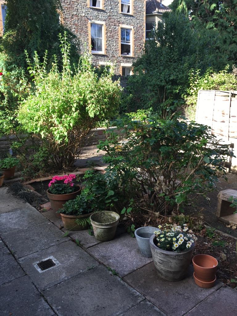 Flatmate to share huge Garden Flat Redland